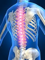 back and spine pain problems