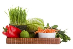 Organic Foods and Produce in Martin County, Palm Beach County, St. Lucie County and Indian River County