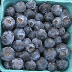 blueberries for health