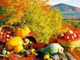 Healthy Foods of the Season