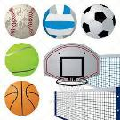 Sports Equipment -Supplies and Fitness Professionals