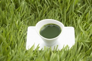 Wheatgrass Juice Health Benefits
